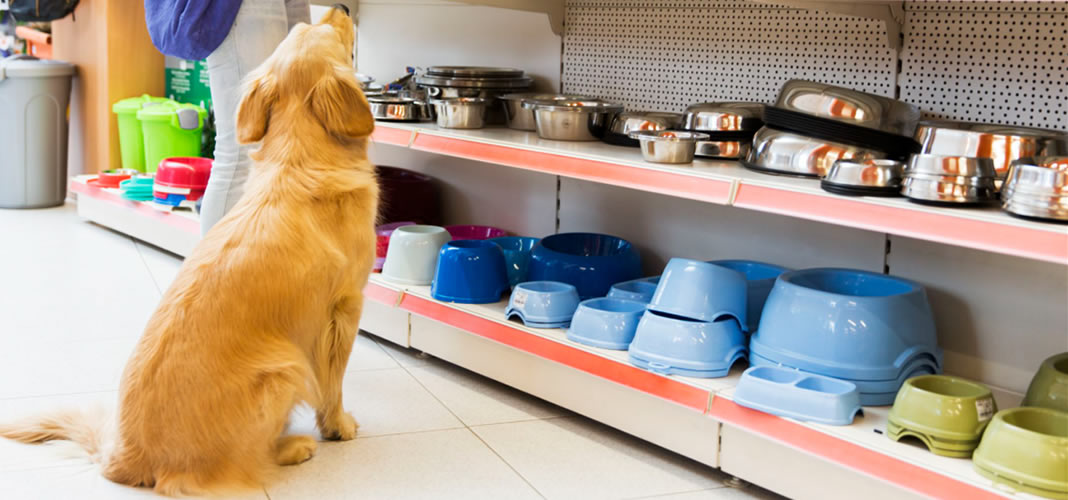 find a Pet Shop in Penrith
