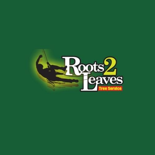 official business logo of Roots 2 Leaves Tree Services